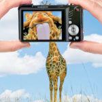 موفقیت در بازاریابی ویدیویی